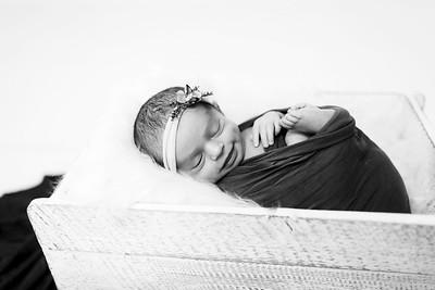 00010--©ADHPhotography2020--Miller--Newborn--January15bw