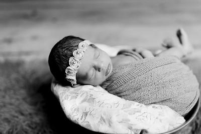 00403--©ADHPhotography2020--Miller--Newborn--January15bw