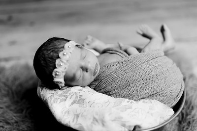 00409--©ADHPhotography2020--Miller--Newborn--January15bw