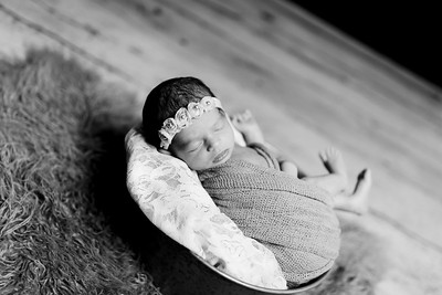 00410--©ADHPhotography2020--Miller--Newborn--January15bw