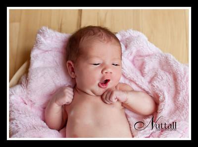 Adalynn Newborn 105