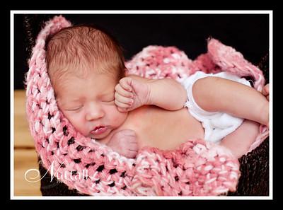 Adalynn Newborn 168