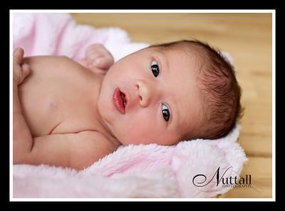 Adalynn Newborn 110