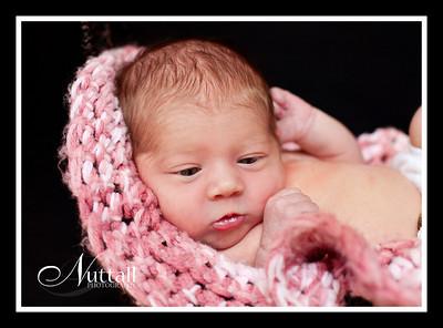 Adalynn Newborn 151