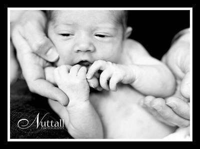 Adalynn Newborn 195