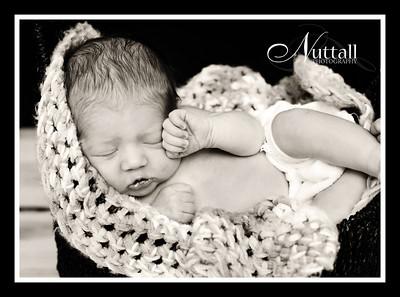 Adalynn Newborn 168sepia