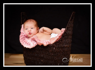 Adalynn Newborn 133