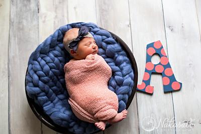 Addie {newborn session}