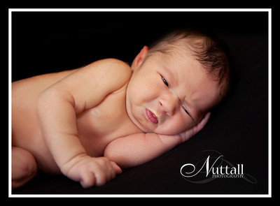 Addison Newborn 044