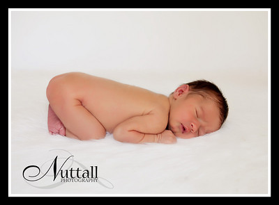 Addison Newborn 074