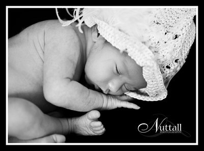Addison Newborn 035