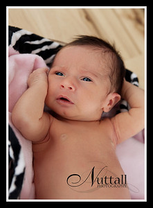Addison Newborn 055