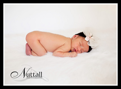 Addison Newborn 082