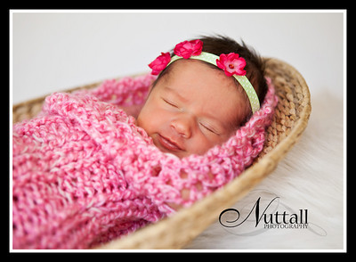 Addison Newborn 088
