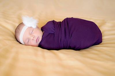 Anna  Hilal ~ Newborn Oct 2012-011