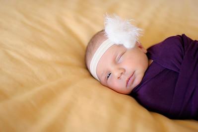 Anna  Hilal ~ Newborn Oct 2012-013