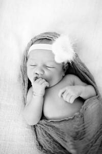 Anna  Hilal ~ Newborn Oct 2012-004