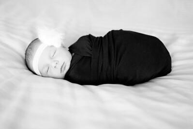 Anna  Hilal ~ Newborn Oct 2012-012