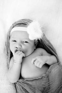 Anna  Hilal ~ Newborn Oct 2012-002