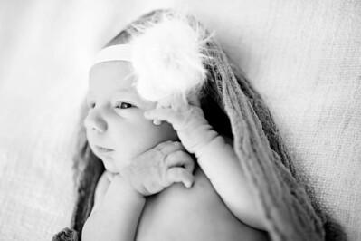 Anna  Hilal ~ Newborn Oct 2012-010