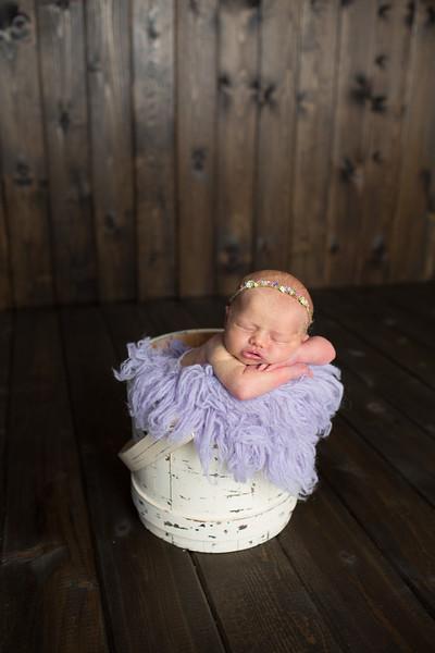 Ansleigh Newborn