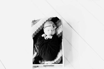 00228--©ADHPhotography2020--Alberts--Newborn--January24bw