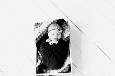 00225--©ADHPhotography2020--Alberts--Newborn--January24bw