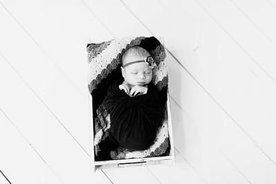 00223--©ADHPhotography2020--Alberts--Newborn--January24bw