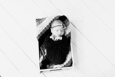 00220--©ADHPhotography2020--Alberts--Newborn--January24bw