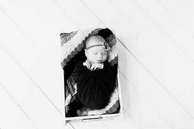 00221--©ADHPhotography2020--Alberts--Newborn--January24bw