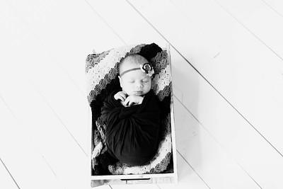 00227--©ADHPhotography2020--Alberts--Newborn--January24bw