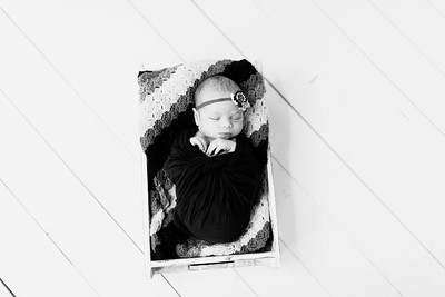 00222--©ADHPhotography2020--Alberts--Newborn--January24bw