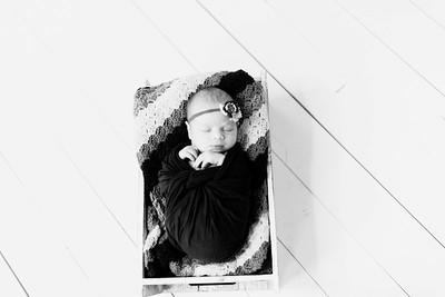 00226--©ADHPhotography2020--Alberts--Newborn--January24bw