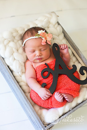 Aurora {newborn session}
