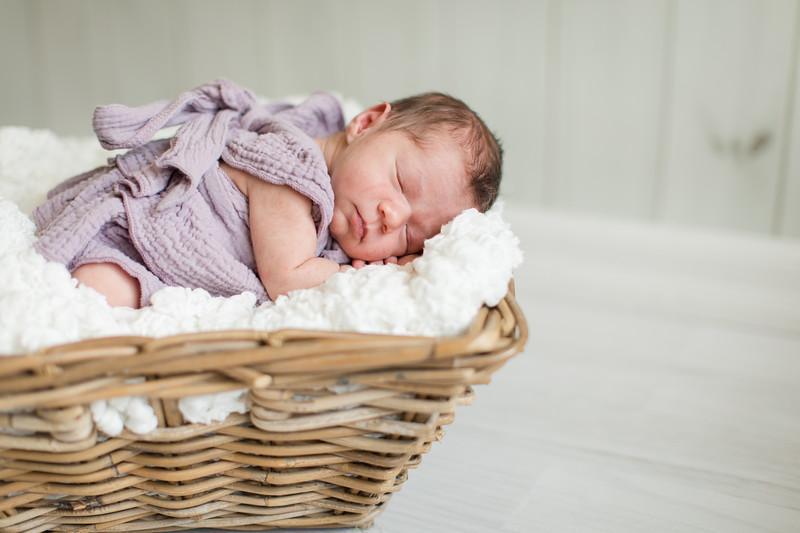 Baby Knox-8
