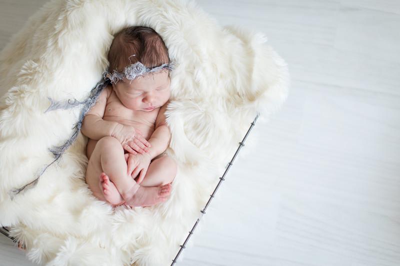 Baby Knox-21