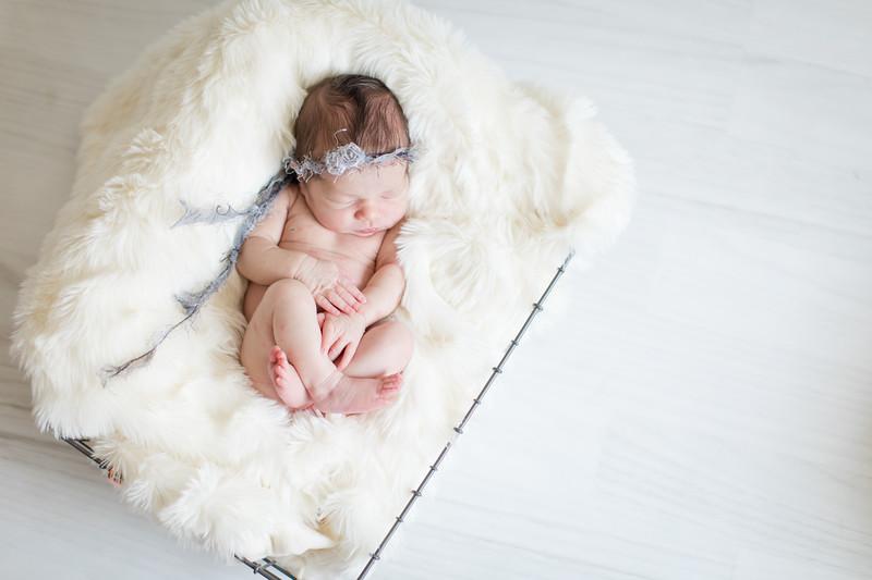 Baby Knox-22