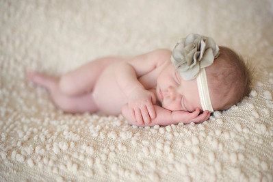 Harleigh~Newborn 8 8 12-026