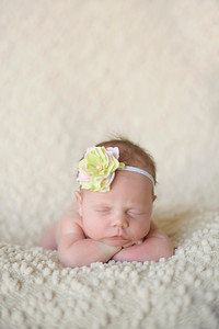 Harleigh~Newborn 8 8 12-019