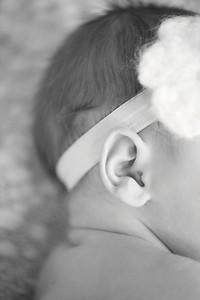 Harleigh~Newborn 8 8 12-010