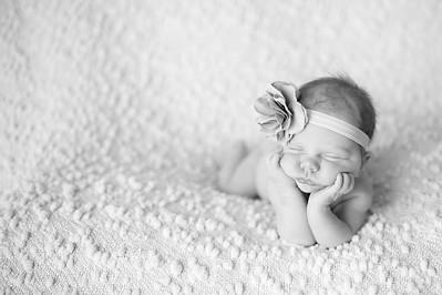 Harleigh~Newborn 8 8 12-025