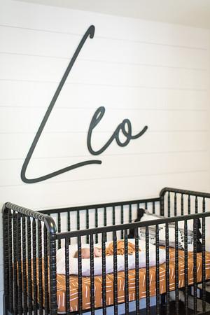 Baby Leo-4