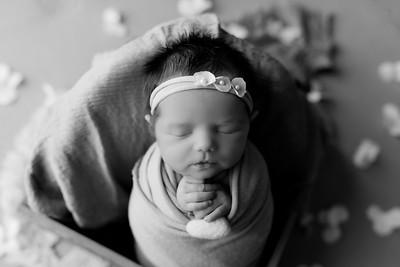 00015©ADHphotography2020--BlaineSchutz--Newborn--March2bw