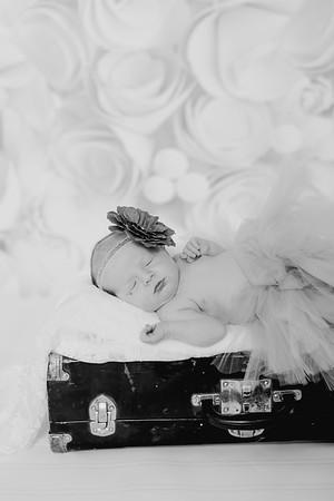 00010--©ADH Photography2017--BlakelyStagemeyer--Newborn