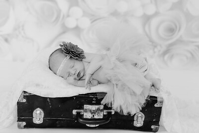 00020--©ADH Photography2017--BlakelyStagemeyer--Newborn