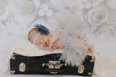 00019--©ADH Photography2017--BlakelyStagemeyer--Newborn