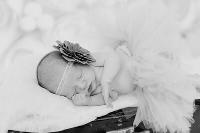 00022--©ADH Photography2017--BlakelyStagemeyer--Newborn