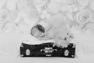 00014--©ADH Photography2017--BlakelyStagemeyer--Newborn