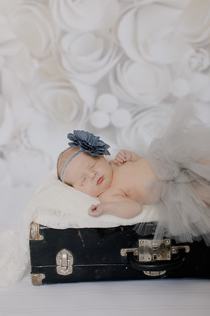 00009--©ADH Photography2017--BlakelyStagemeyer--Newborn