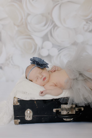 00011--©ADH Photography2017--BlakelyStagemeyer--Newborn